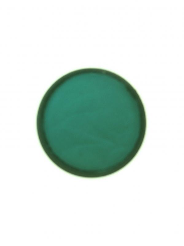 PartyXplosion Pastel Green 43762 (30gr.)